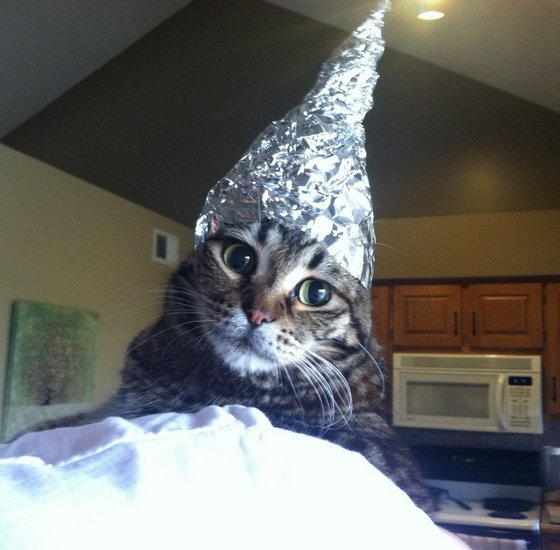 Aluminum foil makes a scary sound to some cats and probably feels weird on their paws. Another example is vacuums. My cat is terrified by it but yet I've seen videos of people